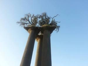 פארק הזיתים. צילום: עידית שוהם
