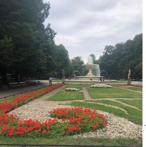הפארק שמעבר לכביש. הפרחים באדום ובלבן עם בצבעי הדגל הפולני