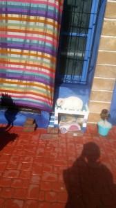 לחתול יש בית. רחוב באסואירה.